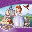 rodjendanska dekoracija sofia the first